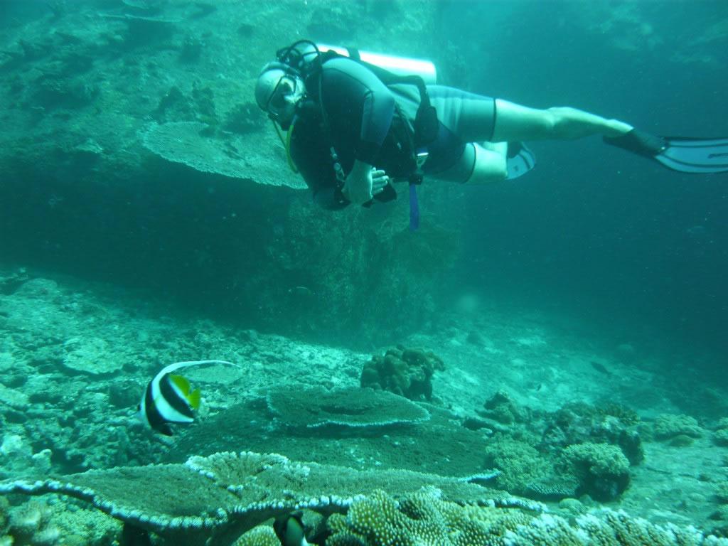 Diving diving 17 1280x768 jpg - Foto dive nude ...